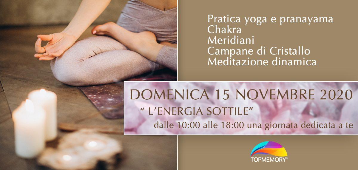 Seminario L'ENERGIA SOTTILE - 15 Novembre 2020